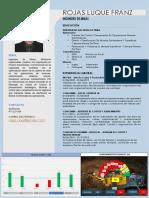 CV Rojas Luque Franz .