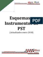 INSTRUMENTOS PST 2018(1) (2)