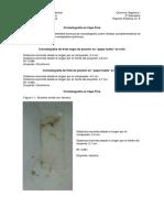 Cromatografia en capa fina.doc