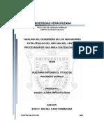264978309-Analisis-Kpi-Estrategicos-Ano-2008procesadra-de-Gas.pdf