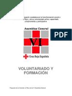 Voluntariado y Formacion