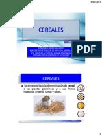 1.01  - CEREALES 2.pdf