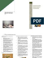 folleto civica
