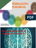 Integración Sensorial Intro