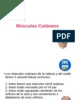 musculos-cutc3a1neos-y-masticadores.pdf