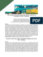 Logística do Polo de Confecções do município de Cacoal – Rondônia Visão Sistêmica da Cadeia
