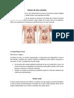 Cáncer-de-vías-urinarias-kia