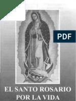 Rosario Por La Vida a la Virgen de Guadalupe