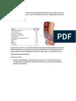 ASCITIS.docx