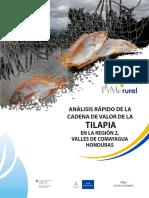 analisis-tilapia Comayagua.pdf