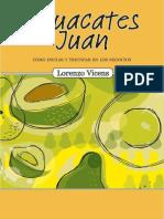 Aguacates Juan – Coìmo iniciar y triunfar en los negocios (Spanish Edition)