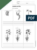 cn_cidelavida.pdf