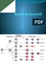 Basofil & Neutrofil.pptx