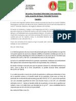 favellan_6to TALLER  Flujo en Lechos  MFS FAV.pdf