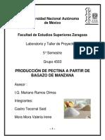LTP5-Manual-Extracción-Pectina (1)