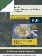 Métodos y Técnicas de Cultivo Microbiano.