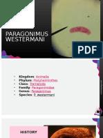 PARAGONIMUS-WESTERMANI.pptx