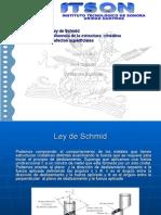 15438385-LEY-DE-SCHMID-Y-LIMITES-DE-GRANO