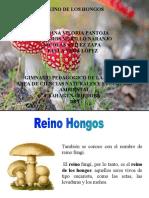 EXPOSICIÓN GRUPO MILAGROS