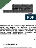elaboracion de una salchicha protocolo de tesis (1)