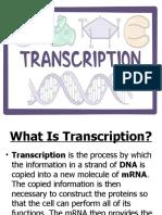 transcription sa biology ghurl.pptx