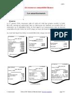 84015540-amortissements.pdf