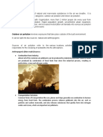Outdoor-Air-Pollution.docx