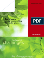 CCS_Brochure.pdf