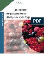 (2017) Органическое выращивание ягодных культур
