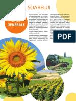 Floarea Soarelui Ecologică (broșură)