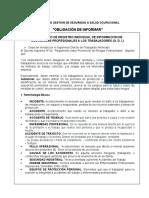 ODI-Maestro-Estructurero-GG.pdf