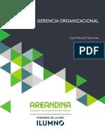 Gerencia organizacional.pdf