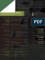 ejemplo-de-curriculum-805-pdf.docx