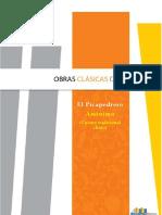 Picapedrero.pdf