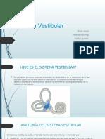 Sistema VestibularRRR