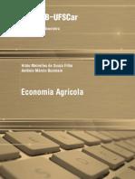 TS_Hildo_EconomiaAgricola.pdf
