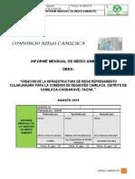 INFORME MENSUAL DE MEDIO AMBIENTE agosto 2019 (00000002).docx