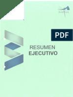 RESUMEN EJECUTIVO QUINJALCA1