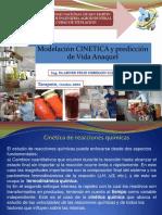 85790873-Modelos-de-Predicicion-de-Vida-Anaquel.pdf