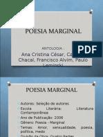 LITERATURA - MARGINAL.ppt