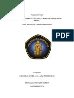 TUGAS PIDSUS 2019.docx