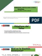 LA GESTION AMBIENTAL ARTICULADA A LA GESTION REGIONAL