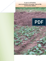 Business plan urban tomato production Porto Novo Benin.pdf
