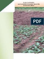 Business plan urban tomato production Porto Novo Benin.pdf