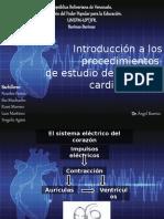 Introducción a los procedimientos de estudio del sistema
