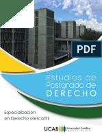 Especialización-Derecho-Mercantil