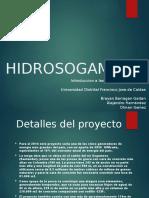 HIDROSOGAMOSO.pptx