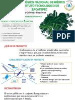 Diferencia Entre Proyecto del Sector Público y Sector Privado