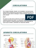APARATO CIRCULATORIO 5.ppt