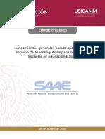 Lineamientos_SAAE_Educacion_Basica_Final_28022020